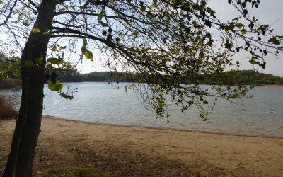 Rat muss über Grillverbot im Seepark entscheiden