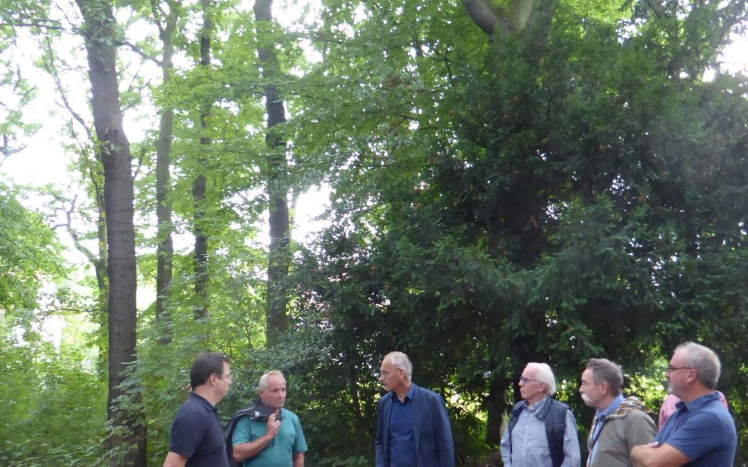 Kleinbecker Park in Horstmar erhalten