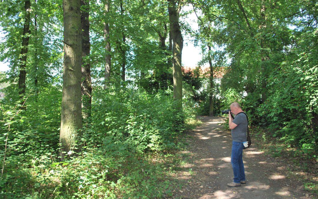 Gutachter: Kleinbecker Park klar erhaltenswert