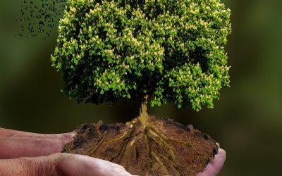 Klimaschutz im Kreis Unna deutlich verbessern